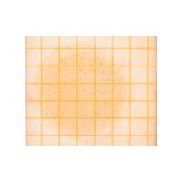 アズワン ペトリフィルムTM培地 (生菌数測定用/50枚×20袋) 6ー8641ー05 1箱(1000枚入) 6ー8641ー05 (直送品)