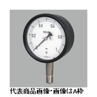 長野計器 密閉形圧力計(屋外・耐食用)φ100 埋込形 1個 (直送品)