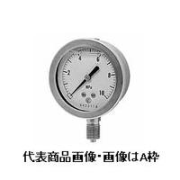 長野計器 グリセリン入圧力計 φ60 埋込形 1個 (直送品)