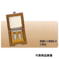 ミツトヨ 超硬保護ゲージブロックセット BM2-2-0 1セット (直送品)