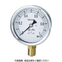 右下精器製造 グリセリンーT GLT-21-0.6MP 1個 308-3993 (直送品)