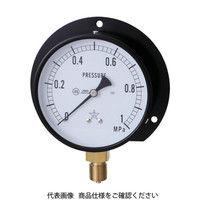 右下精器製造 一般圧力計 G421-211-V-0.6MP 1個 326-0194 (直送品)