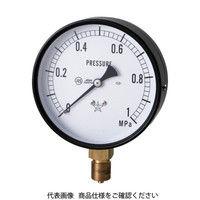 右下精器製造 スター (圧力計) S-41-0.25MP 1個 321-4125 (直送品)