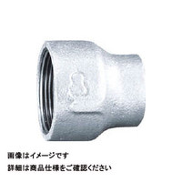 日立金属 径違いソケット RS-50AX40A 1個 163-3660 (直送品)