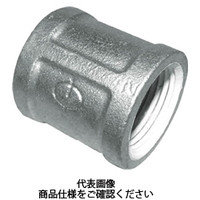 リケン(RIKEN) シール材付ネジ込み式白管継手 ZD-BS-25A 1個 284-3102 (直送品)