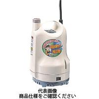 工進 ポンディ(清水用水中ポンプ) SM-525H 1台 211-0423 (直送品)