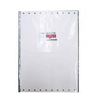 マイゾックス(Myzox) 地籍測量図用紙B4厚口 C65F-B4100P 1セット (直送品)