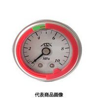 カラーリング付グリセリン圧力計 OPG-DT-R1/4-39×25MPa-S-CR OPG-DT-R1/4-39x25MPa-S-CR (直送品)