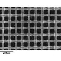 Nylon net filter disc Hydrophilic 140μm 47mm 100/Pk NY4H04700 1 61-0195-36 (直送品)