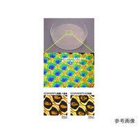 AGCテクノグラス EZSPHERE(スフェロイド形成培養用容器) マイクロプレート 6well 5枚 4810-900 61-9713-29 (直送品)