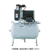 アネスト岩田(ANEST IWATA) レシプロコンプレッサ(タンクマウント・オイルフリータイプ) TFP02C-10M 1台 423-7773 (直送品)