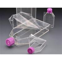 AGCテクノグラス EZーOpen Top FLASK(TM)(付着性細胞用・ベントキャップ)150cm2 1ケース20個入3183-150 1ケース(直送品)