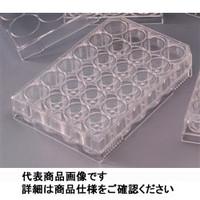 AGCテクノグラス 組織培養用マイクロプレート(付着性細胞用) 24well 1ケース50枚入 3820-024 1ケース  (直送品)