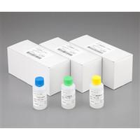 アズワン インスタント緩衝溶液RM102ーPN リン酸緩衝生理食塩水pH7.4 2-3106-06 1箱(10本入) 2-3106-06 (直送品)