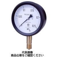 第一計器製作所 密閉形圧力計 MPPプラスチック密閉圧力計 AMU R1/2100×0.06MPa MPP-941A-/06-M 1台 (直送品)