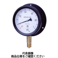 第一計器製作所 密閉形圧力計 MPPプラスチック密閉圧力計 BVU R3/8100×0.05MPa MPP-841B-/05-V 1台 (直送品)