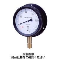 第一計器製作所 密閉形圧力計 MPPプラスチック密閉圧力計 BVU R3/8100×0.16MPa MPP-841B-/16-V 1台 (直送品)