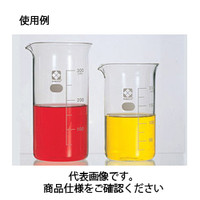 コクゴ トールビーカー<ガラス> 1000ml 目安目盛付 111-59406 1セット(2本入) (直送品)