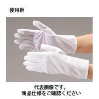 コクゴ クリーンルーム用静電手袋 無塵手袋 2701静電気防止クリーングローブ LL 104-91502 1袋(10双入) (直送品)